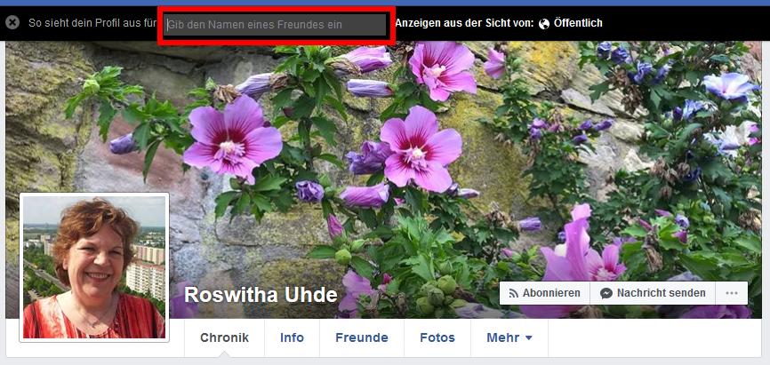 Meine Facebook-Chronik aus Sicht einer bestimmten Person